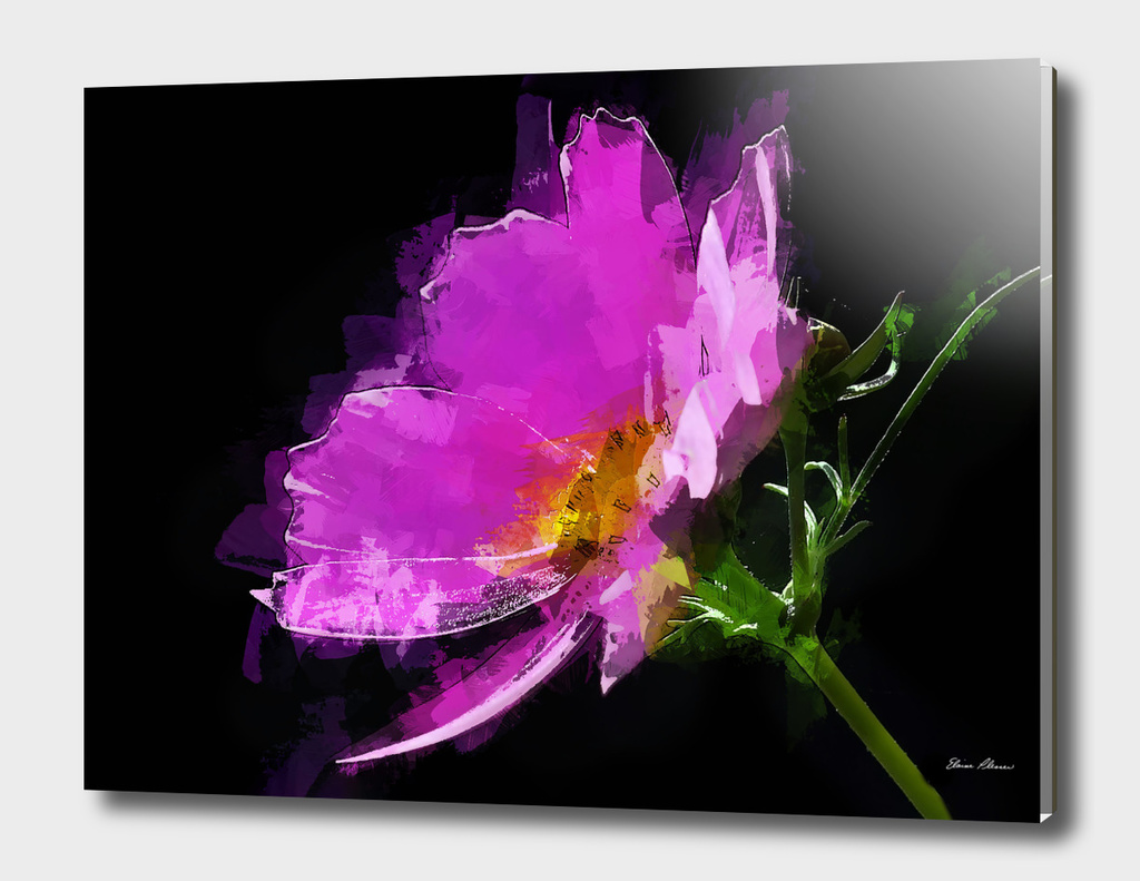 Abstract Expressionist Pink Cosmos Flower