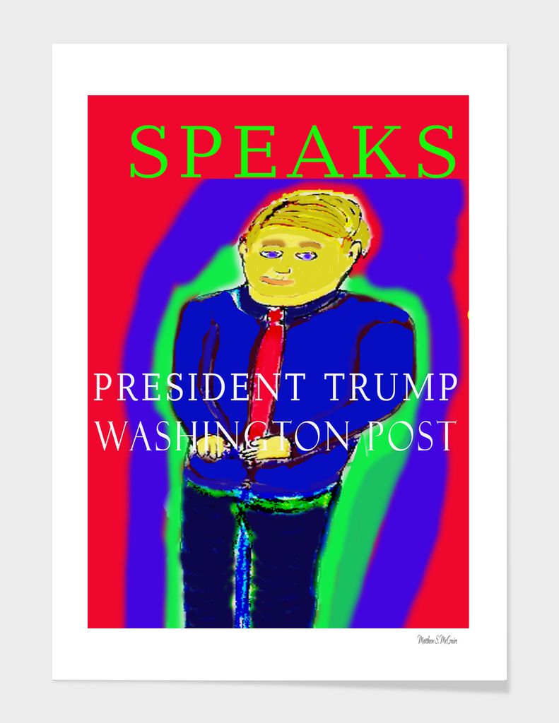 President-2017-speaks-USA