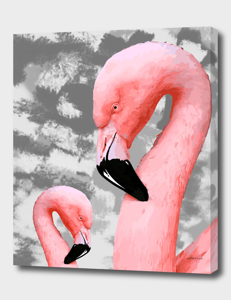 Flamingo Series 3