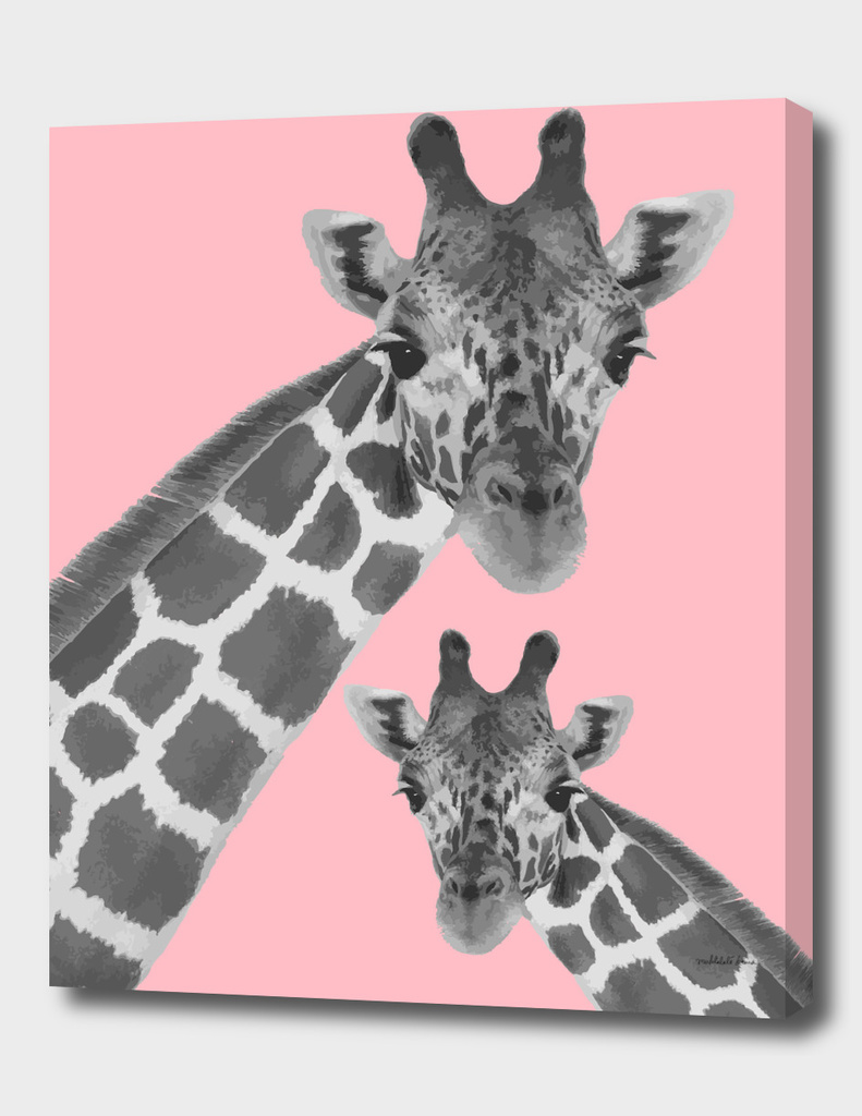 Giraffe Series 1