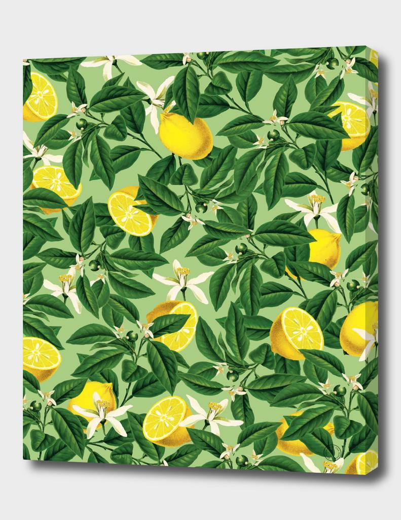 Lemonade V2