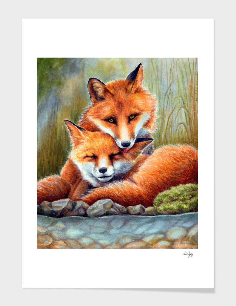 Enamored Foxes