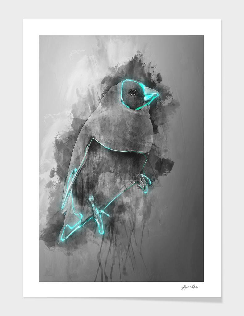 bird Gouldian finch
