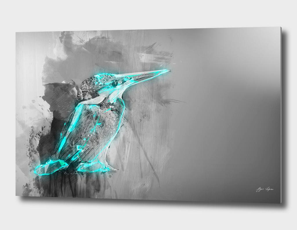 bird Kingfisher