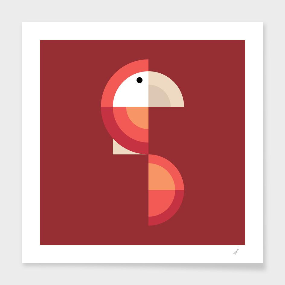 Quadrant Rose Parrot II