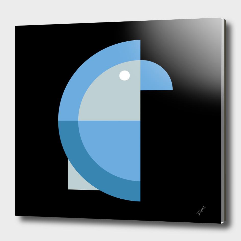 Quadrant Blue Parakeet