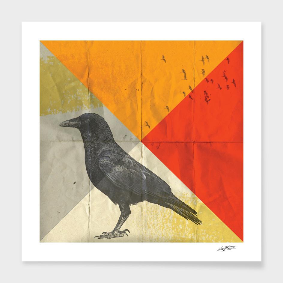 Angle of a Raven
