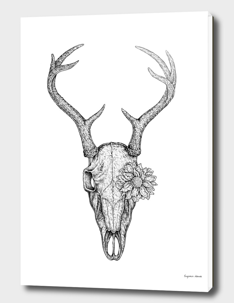 Deer Skull and Flower
