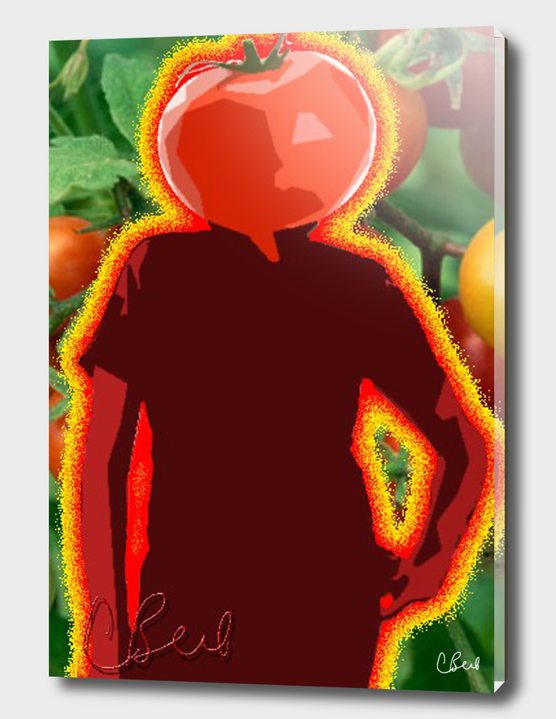 Mr. Tomato Head
