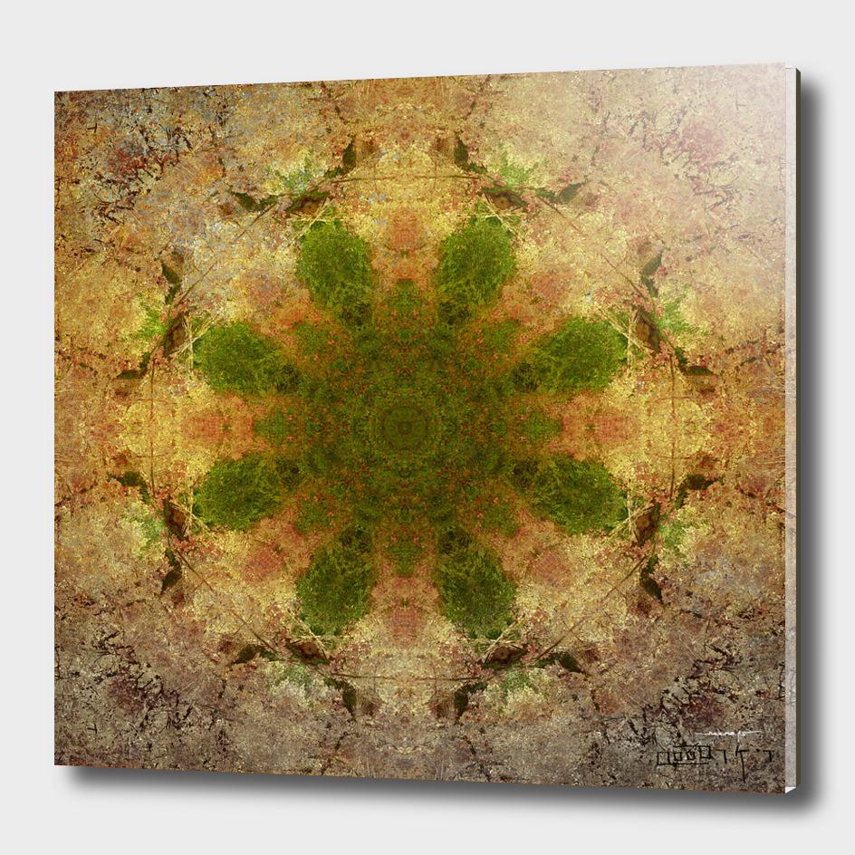 Green Flower Fossil