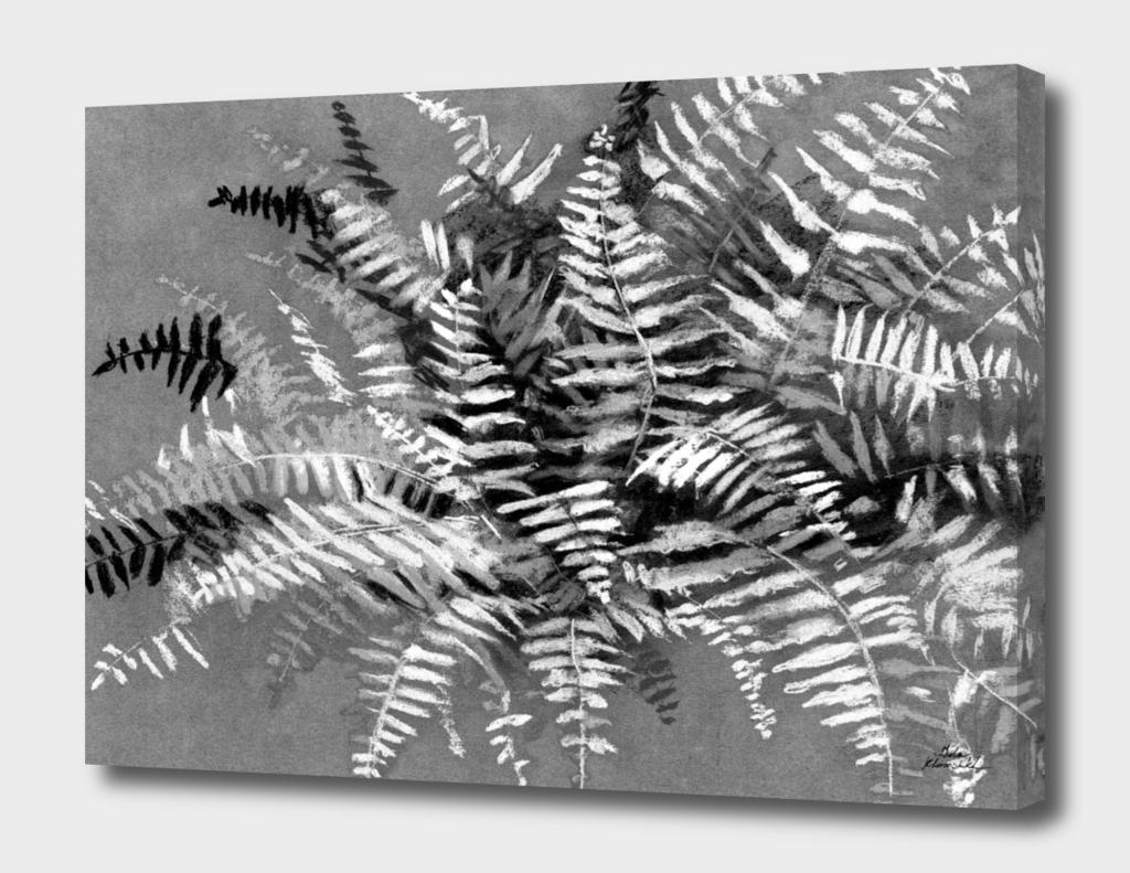 Fern, monochrome version