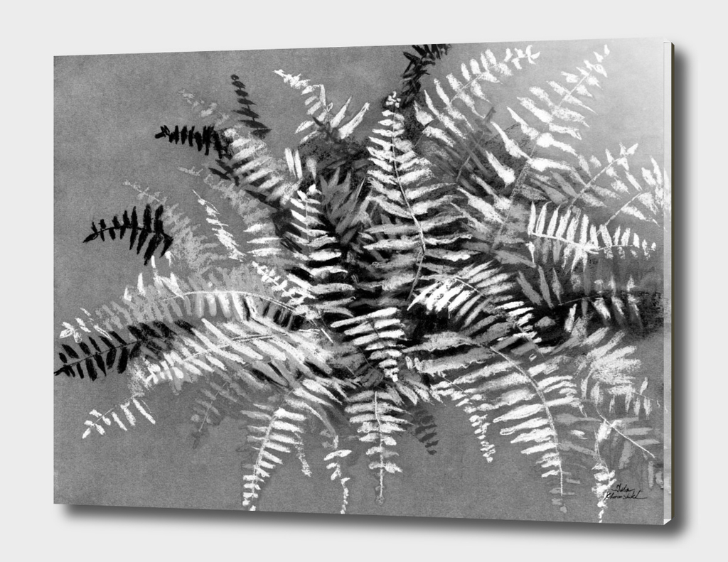 Fern, monochrome version