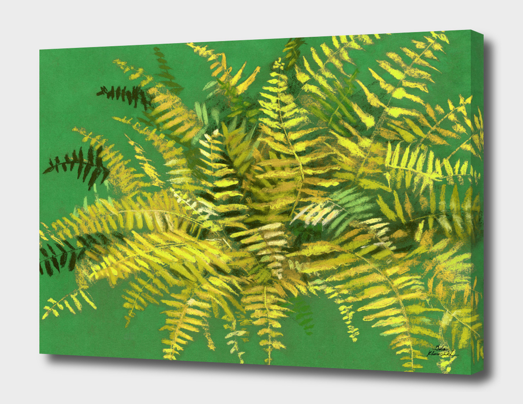 Fern, green & yellow