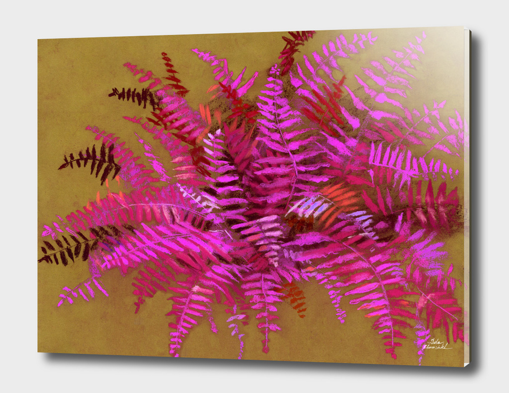 Fern, pink & gold version
