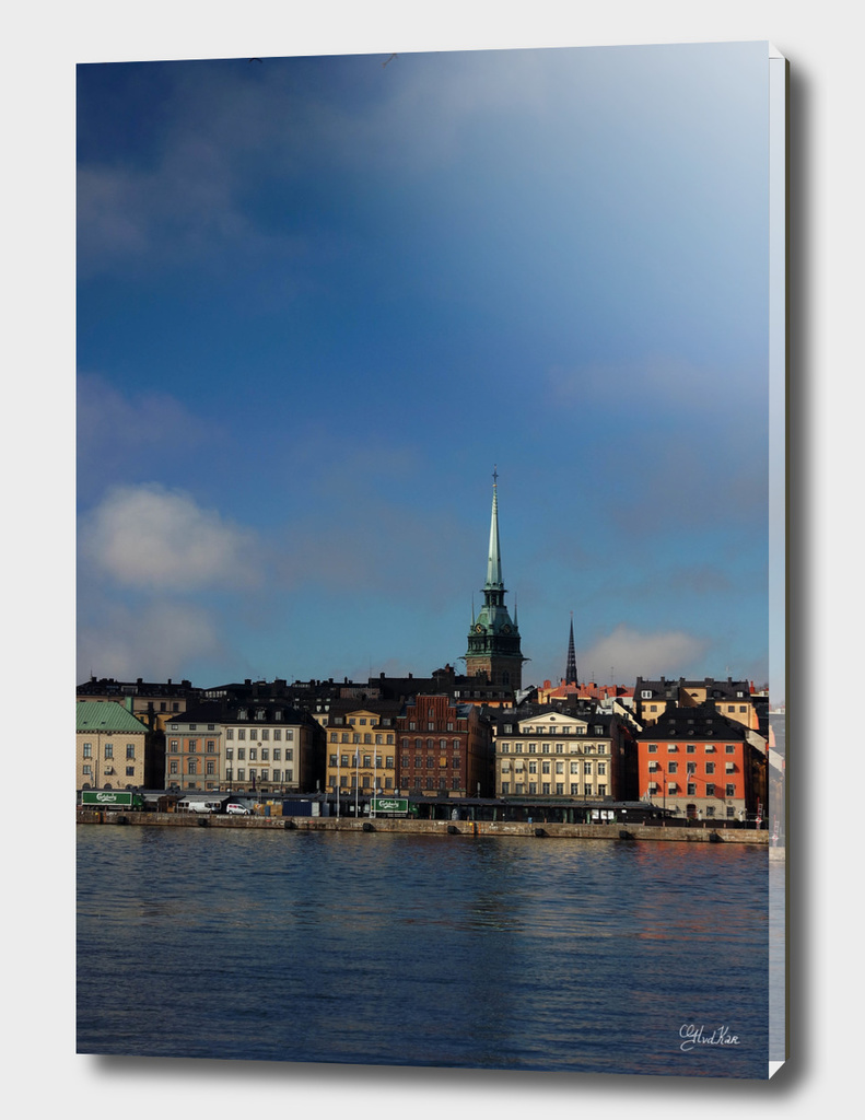 Stockholm portret
