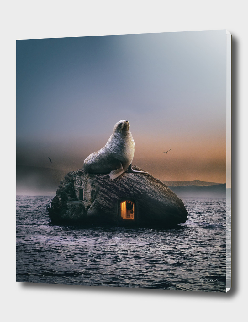 seal at sunset (the guardian 2)