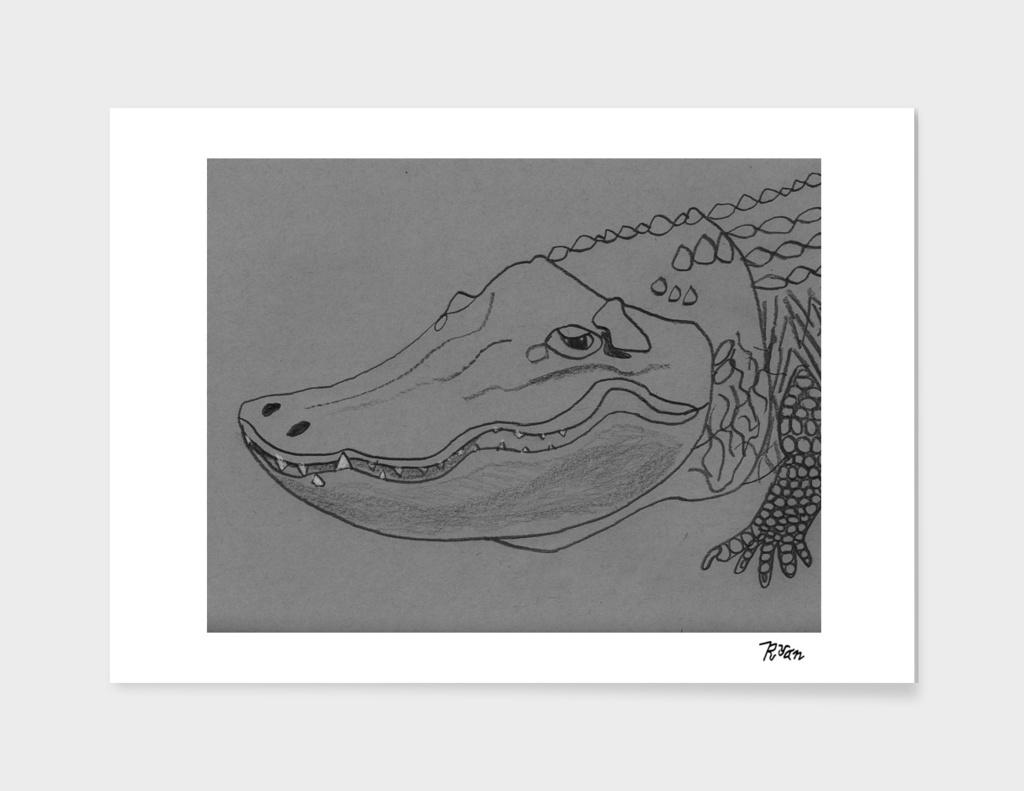Hunting Alligator