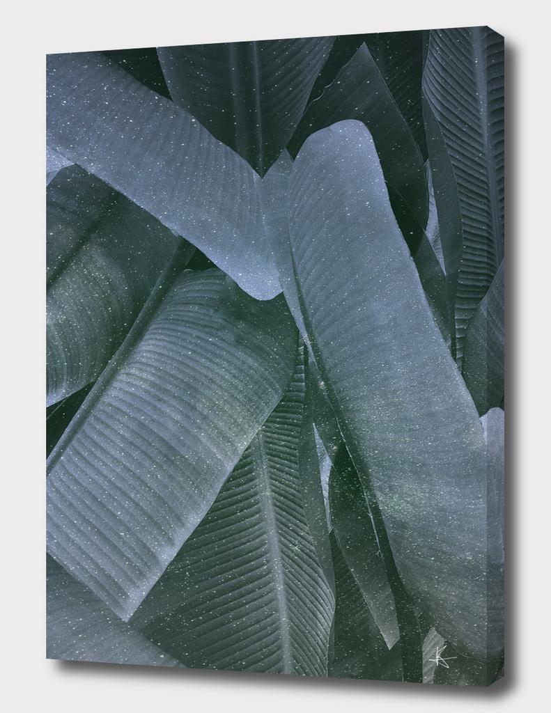 cosmic leafs