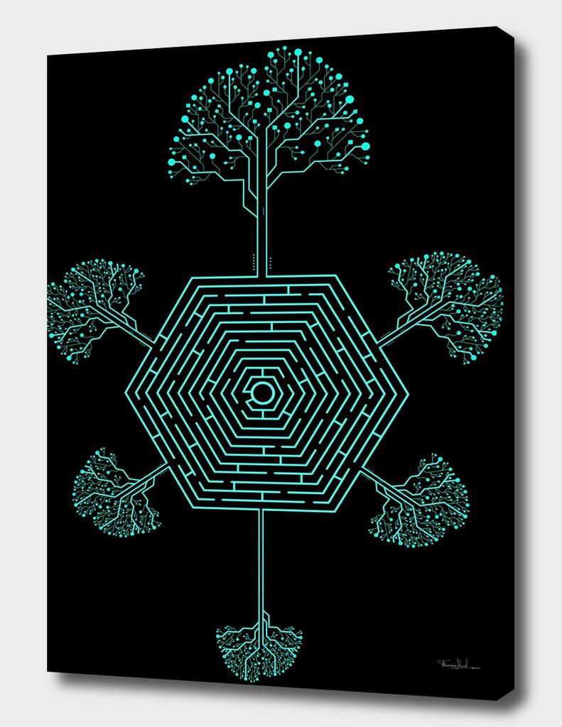 Roots Maze