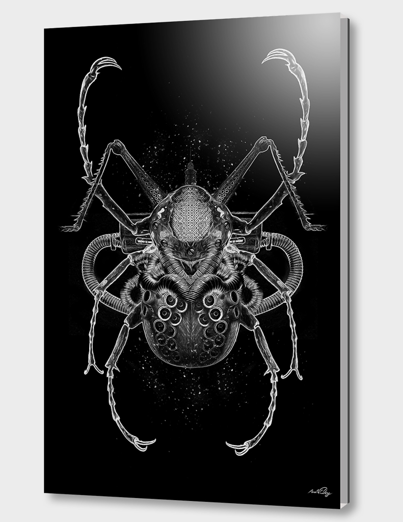 FANTASMAGORIK® INSECTS 1