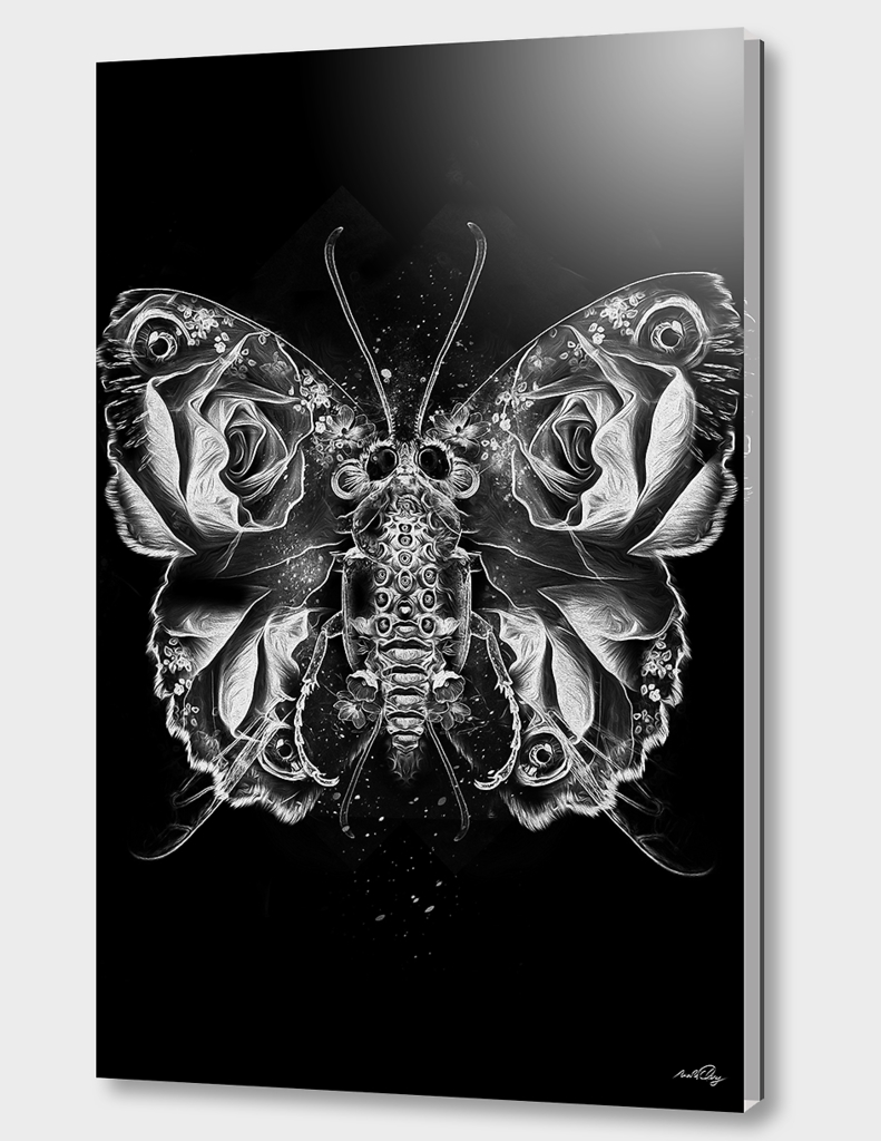 FANTASMAGORIK® INSECTS 3