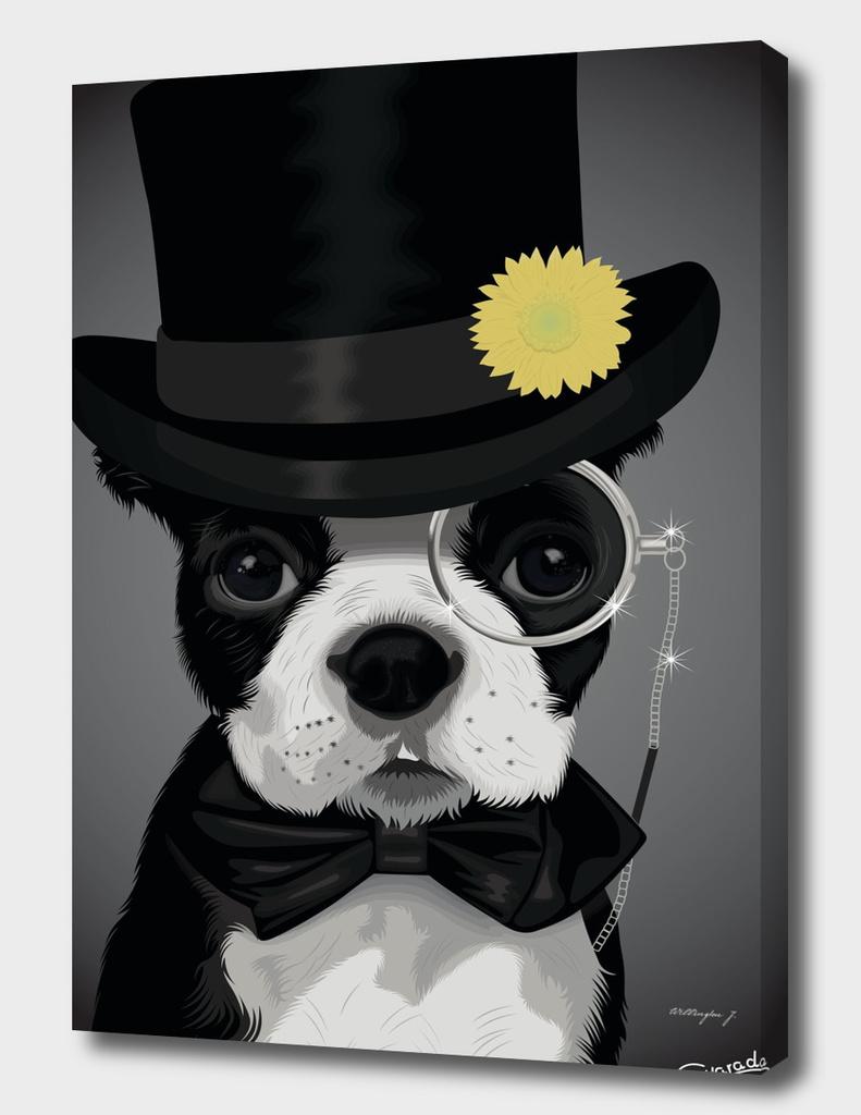 Sir Dog