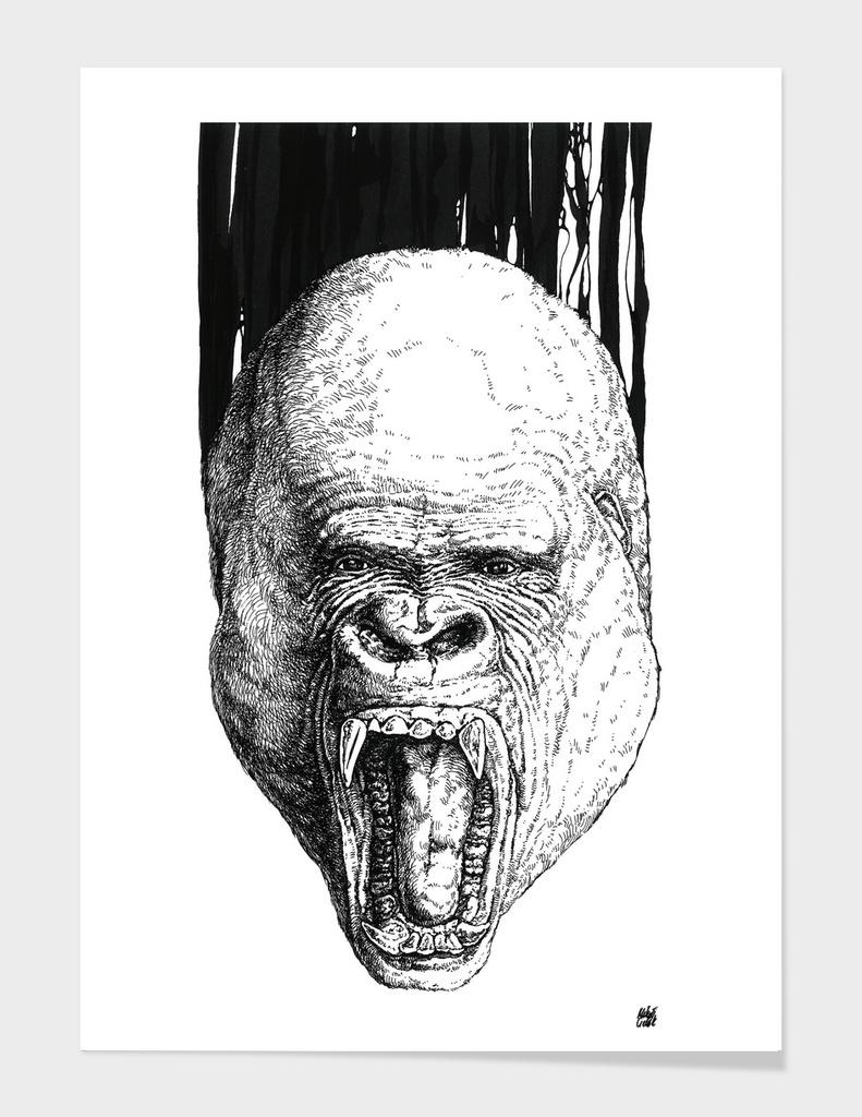 Gorilla v.01