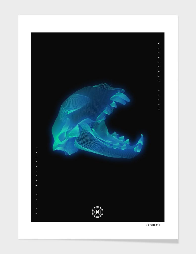Cat Skull wireframe