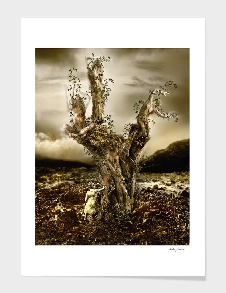 IMMORTAL Yucca brevifolia