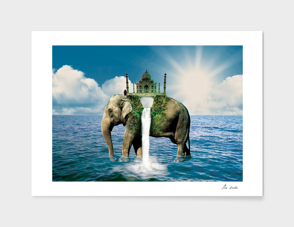Elephant in the sea
