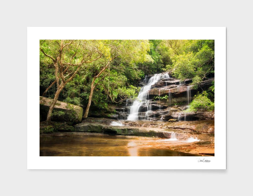 Somersby Falls, NSW, Australia.