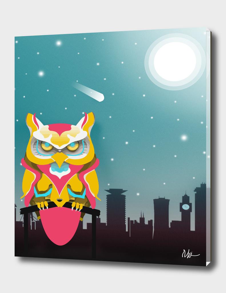 Nairobian Owl