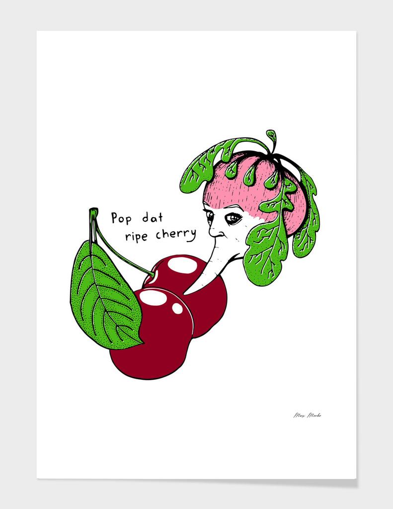 Still life with radish and cherries