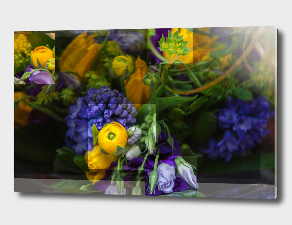 flowers composition