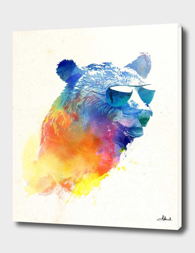 Sunny bear