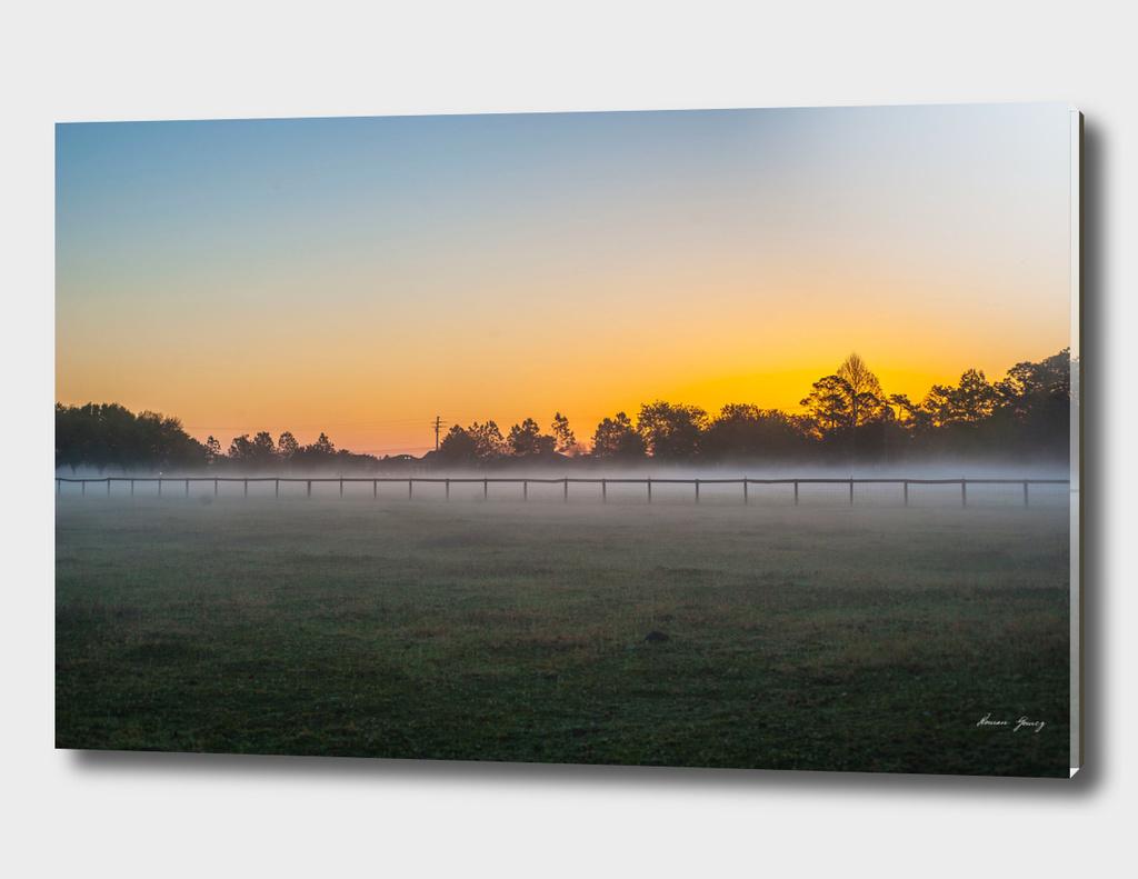 Florida sun rising morning