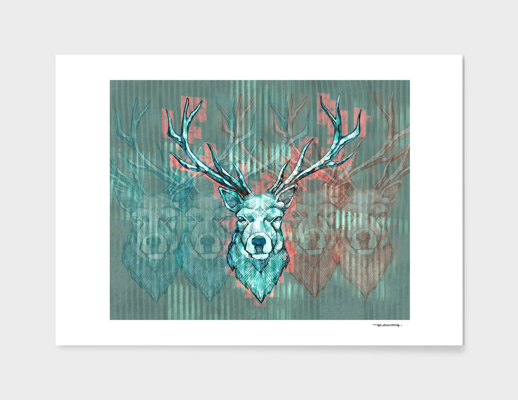 Long horns deer illustration