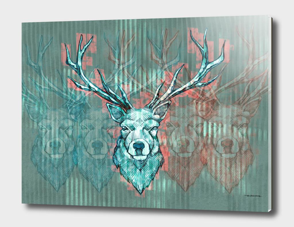Long horns deer illustration