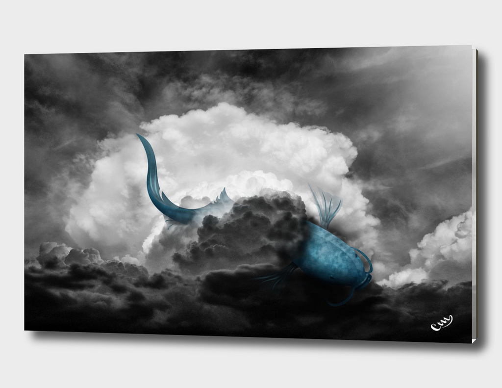 Painting the Clouds1