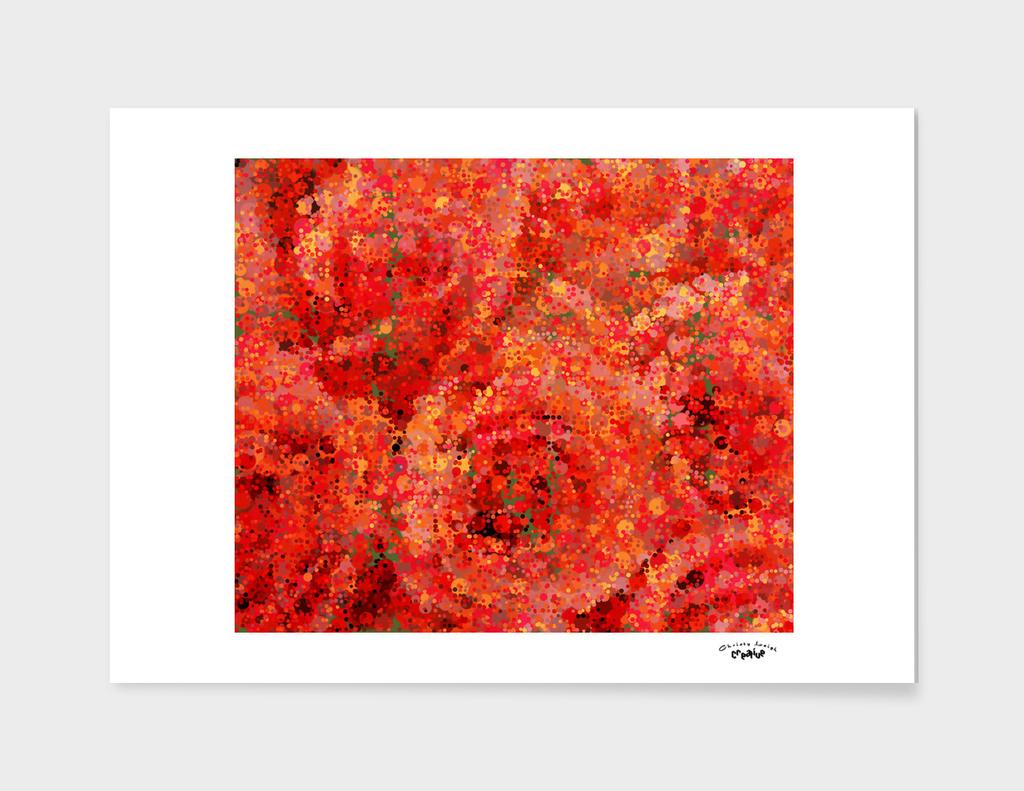 Blushed Rose Impression 2