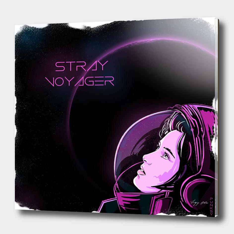 Stray voyager