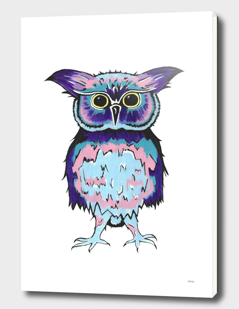 Small Scrappy Owl
