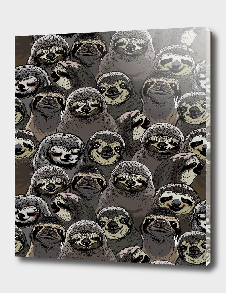 Social Sloths