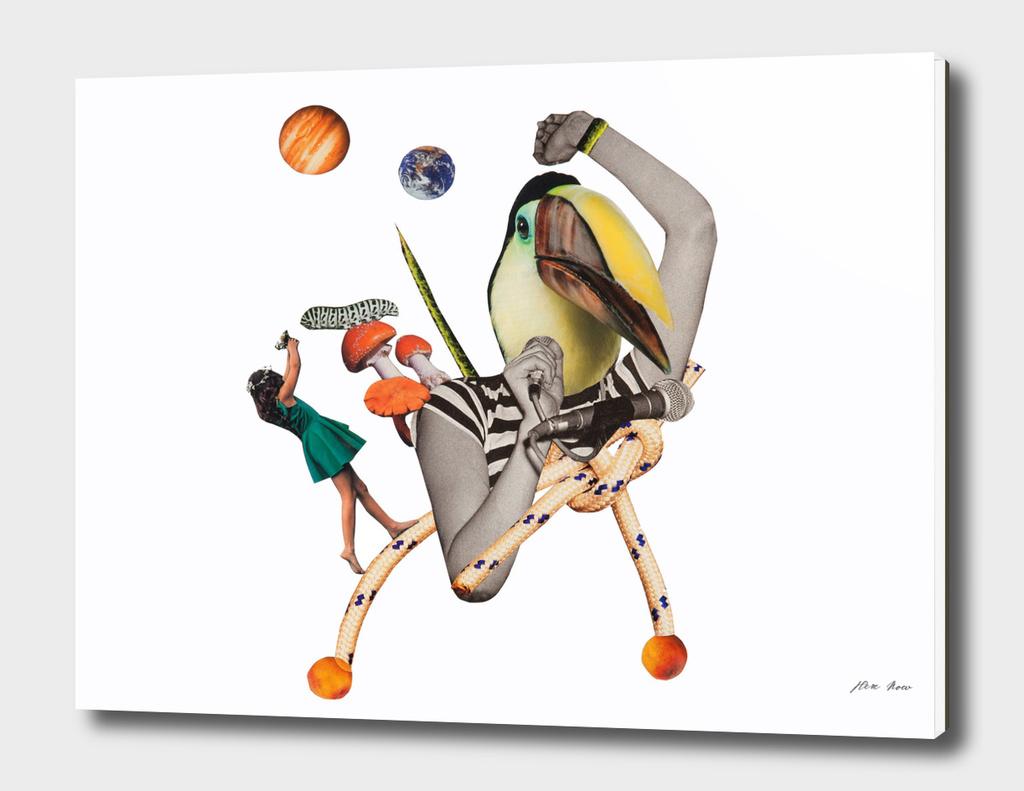 pelican punk