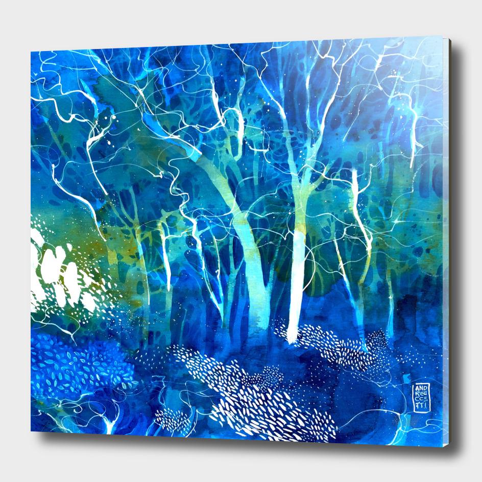 Una luce nel bosco