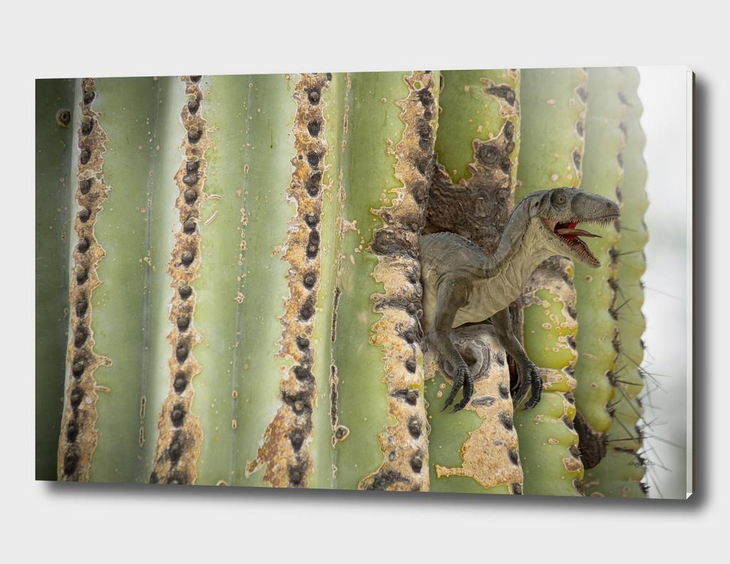 Cactus Raptor