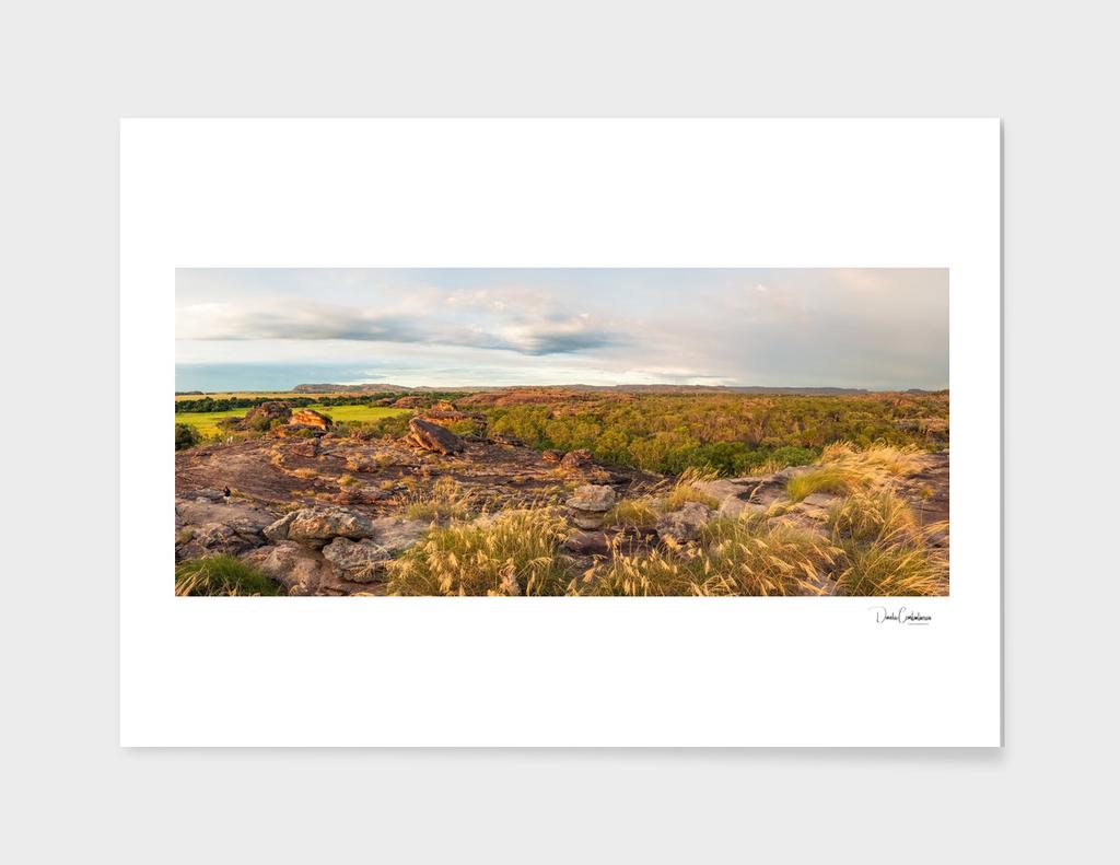 Rocky Escarpment and golden grasses -Kakadu