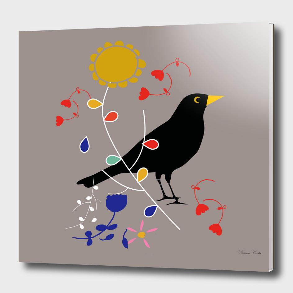 black bird grey