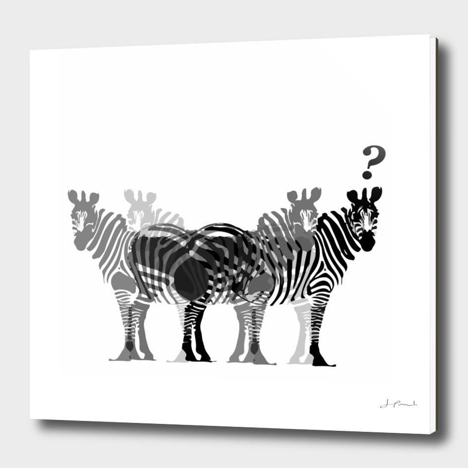 zebras?