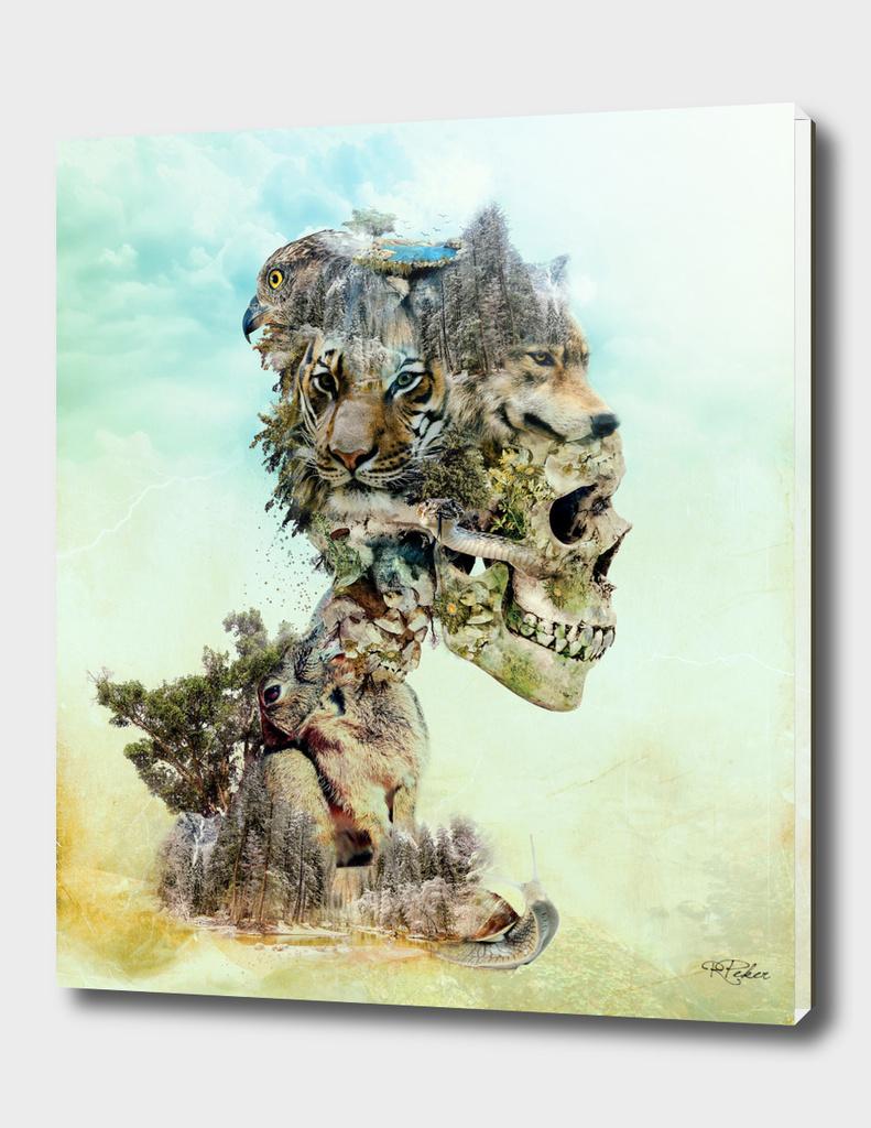 Nature Skull